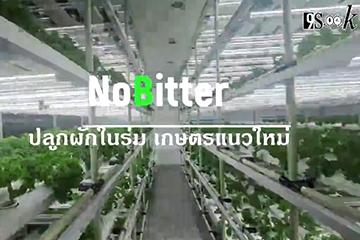 noBitter อีกทางเลือกของคนเมือง การปลูกผักสดในอาคารใจกลางกรุงเทพ